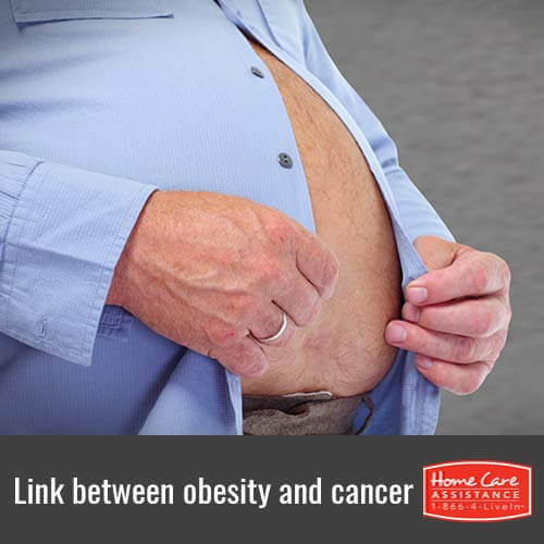 Can Obesity Increase a Senior's Risk of Cancer in Rhode Island?