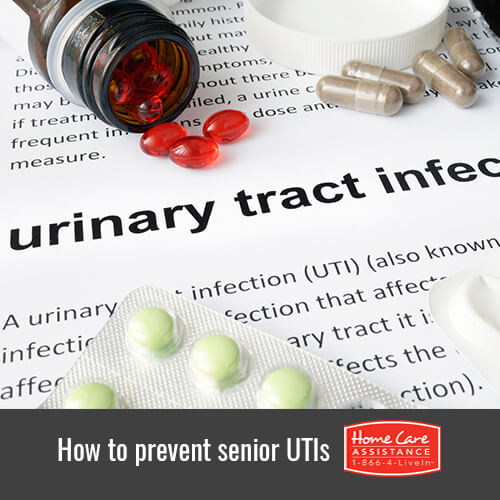 How to Prevent Urinary Tract Infections Among Seniors in Rhode Island