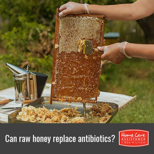 Treating Bacterial Infections with Raw Honey in Rhode Island