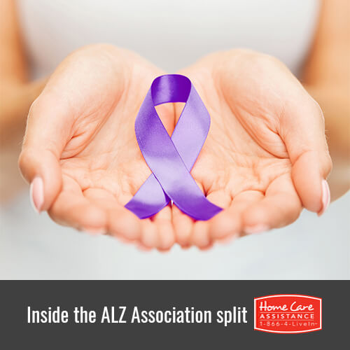 What Did the Alzheimer's Association Split into Local Factions in Rhode Island?