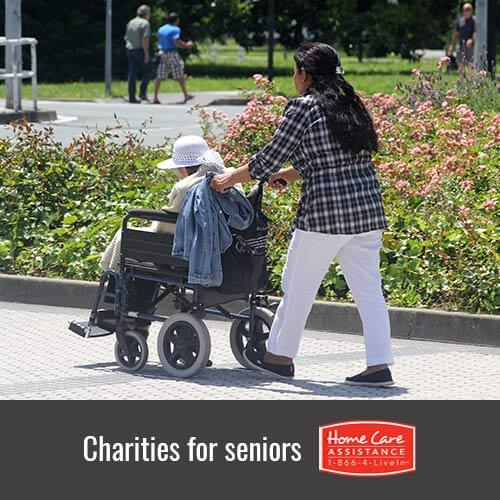 Notable Charities that Benefit Seniors in Rhode Island