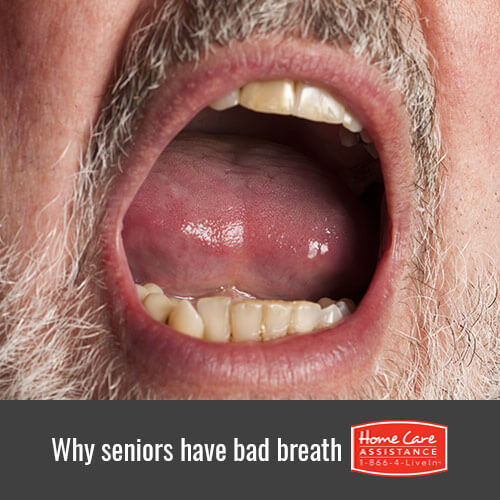 6 Reasons Seniors Have Bad Breath in Rhode Island