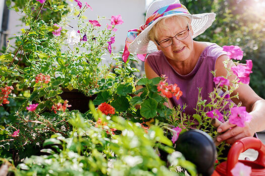 Benefits of Gardening in the Golden Years in Rhode Island